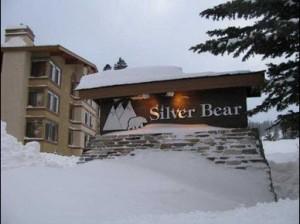 silver bear 2